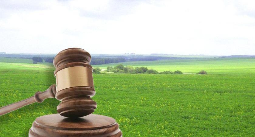 земельное право услуги юриста